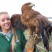 Ridgeside Falconry Display